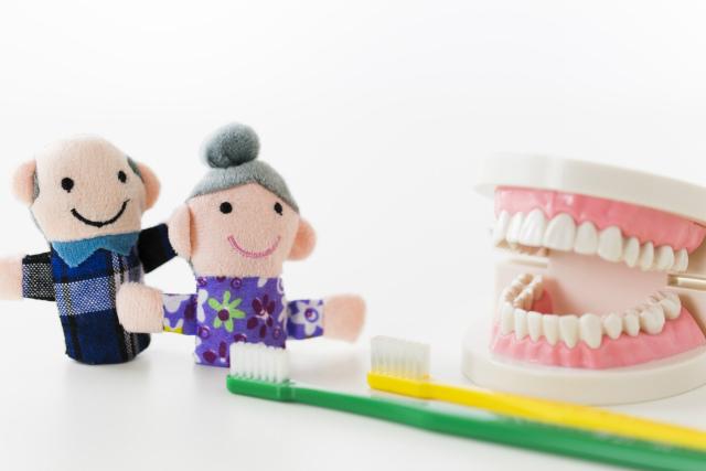 入れ歯イメージ写真