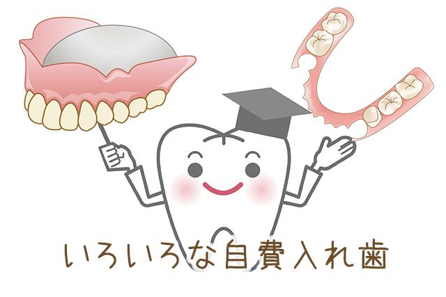 もし作り直すなら自費入れ歯がオススメ