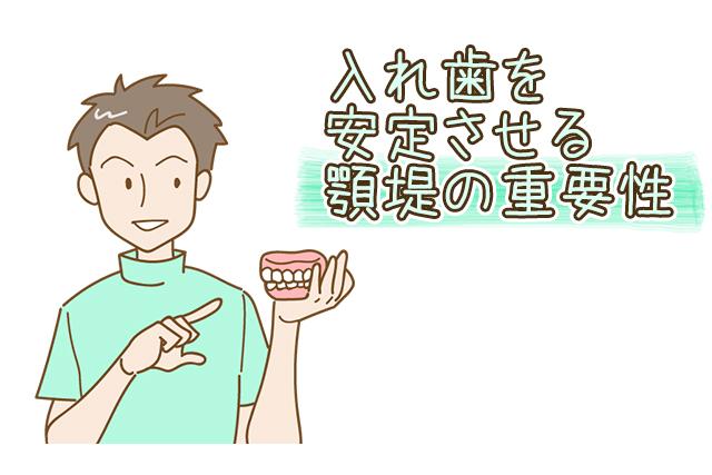 入れ歯を安定させる顎提の重要性
